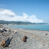 Torere Bay. East Coast. New Zealand Images.