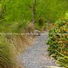 Lush garden path. New Zealand images.