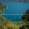 Looking down on beautiful Marlborough Sounds from Queen Charlotte Track