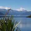 Scenic Lake Roto-iti, in Nelson Lakes National Park. New Zealand images.