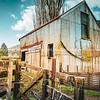 Old rural building and stock yard railings.
