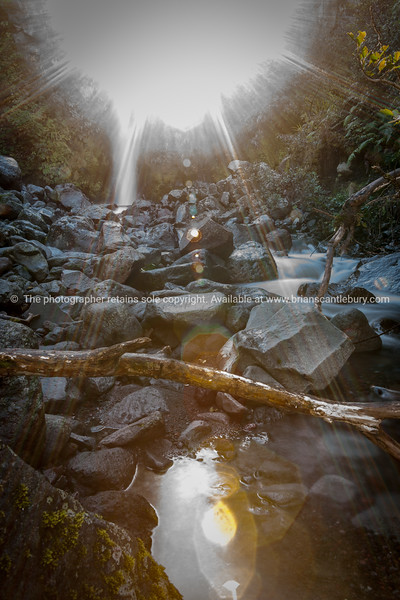 Rocky river bed with remaining stream flowing lit by bright glow of sun through trees