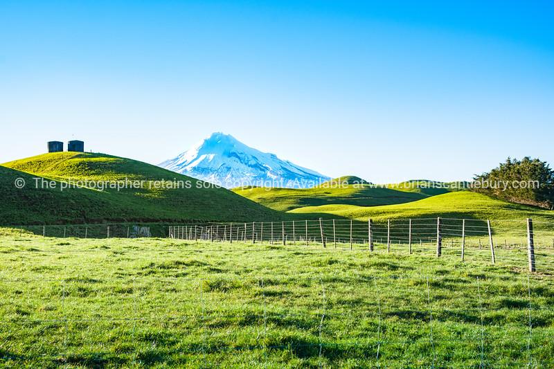 Mount Egmont snowcapped between rolling green pastures