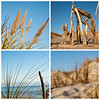 Beach collage. Four beach images. New Zealand images.