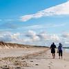 Karikari beach beachcombers.