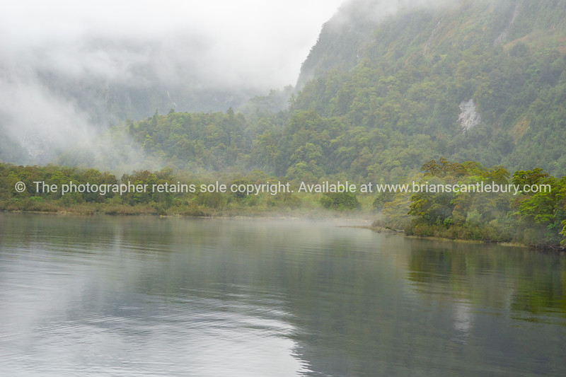 Doubtful Sound, Milford NAtional Park  (62 of 97)