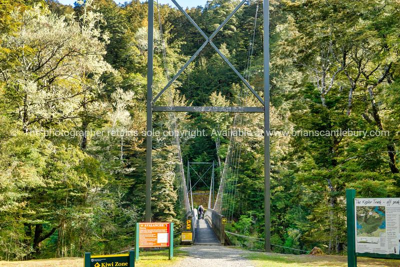 Rainbow Reach entrance Keplar Track South Island (1 of 50)