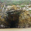 Cathedral Caves on Waipati Beach rise 30 metres above the flat sand
