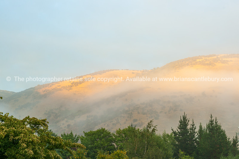 Sun through morning mist on hills beyond low trees