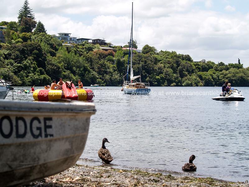 Acacia Bay, Lake Taupo, New Zealand.