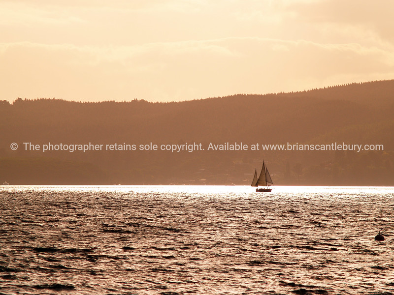 Yacht returns to bay in evening light.