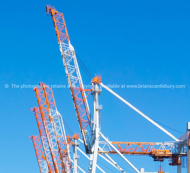 Container cranes of wharf.