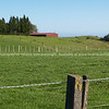 "Tauranga scenics.<br /> <br /> Rural New Zealand, farmland. Tauranga is New Zealands 5th largest city and offers a wonderfull variety of scenic and cultural experiences. Tauranga stock images Tauranga scenics. See;  <a href=""http://www.blurb.com/b/3811392-tauranga"">http://www.blurb.com/b/3811392-tauranga</a> mount maunganui landscape photography, Tauranga Photos; Tauranga photos, Photos of Tauranga Also see; <a href=""http://www.brianscantlebury.com/Events"">http://www.brianscantlebury.com/Events</a>"
