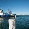 """Tauranga Tug boats moored in Pilot Bay, Mount Maunganui-21 Te matua & Kaimai.<br /> Property Release; NO, Editorial or personal use only. See;  <a href=""""http://www.blurb.com/b/3811392-tauranga"""">http://www.blurb.com/b/3811392-tauranga</a> mount maunganui landscape photography, Tauranga Photos; Tauranga photos, Photos of Tauranga Also see; <a href=""""http://www.brianscantlebury.com/Events"""">http://www.brianscantlebury.com/Events</a>"""