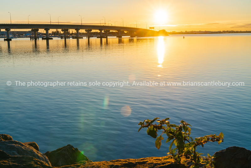Sweeping lines of Tauranga Harbour Bridge over calm blue water with glow of rising sun at far end.