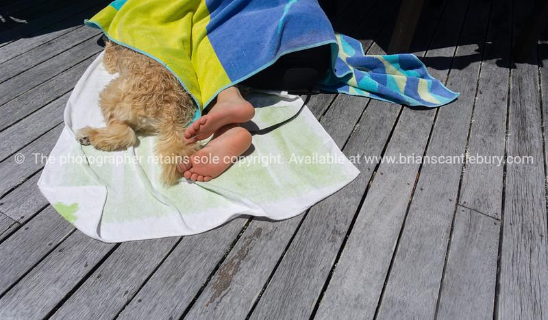 Friends asleep under towel