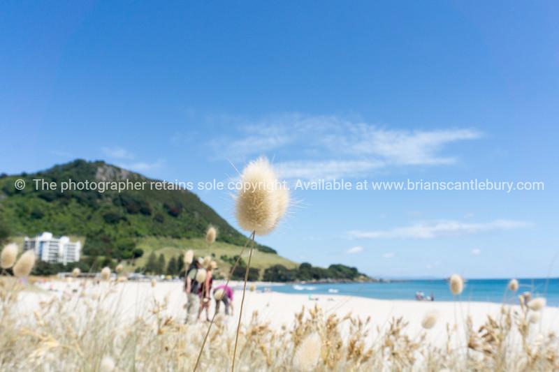 Mount Maunganui and beach. (39 of 56)