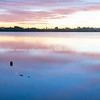 Bay of Plenty sunrise (4 of 9)