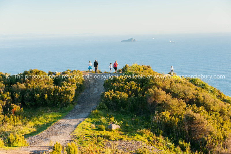From the top, Mount Maunganui