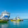 Port of Tauranga pilot boats and large cruise liner berthed at Mount Maunganui wharf