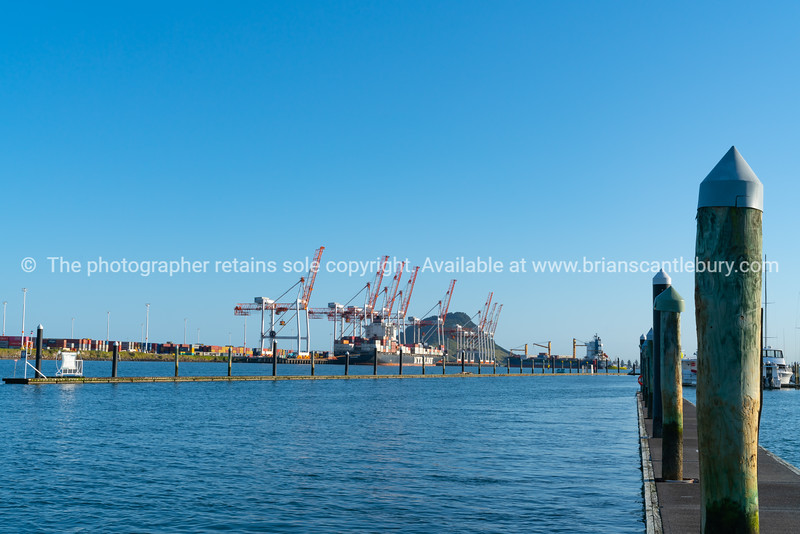 Port of Tauranga containers and cranes