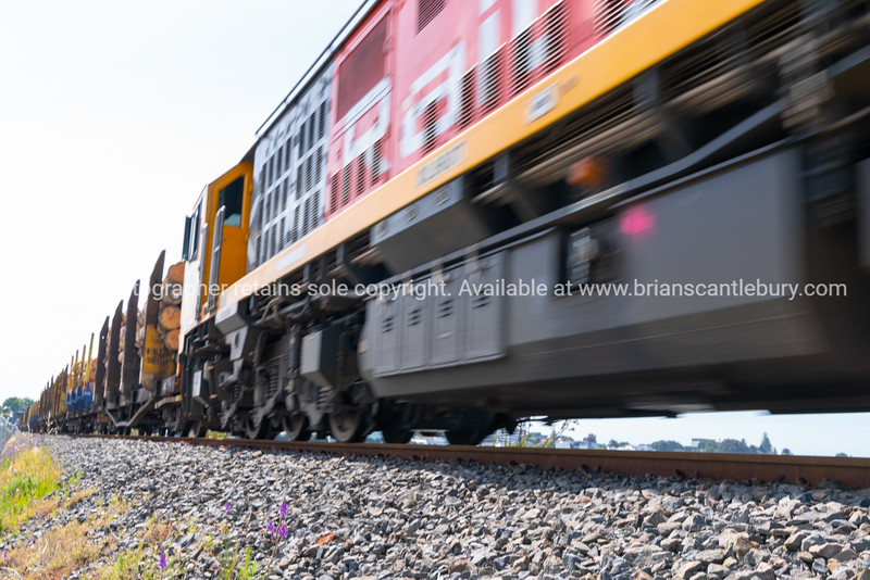 Passing rail train and log carriages