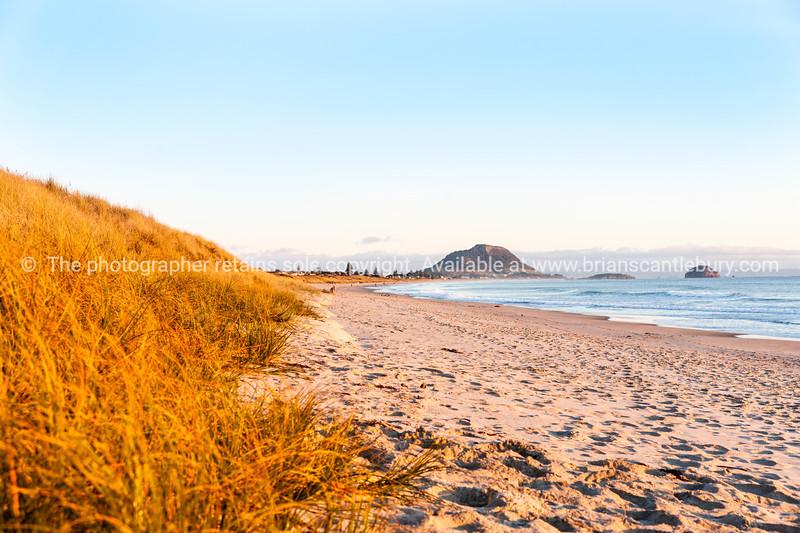 Golden morning on Papamoa Beach