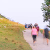 Blurred images of large group people walking up sloping track of Mount Maunganui at sunrise.