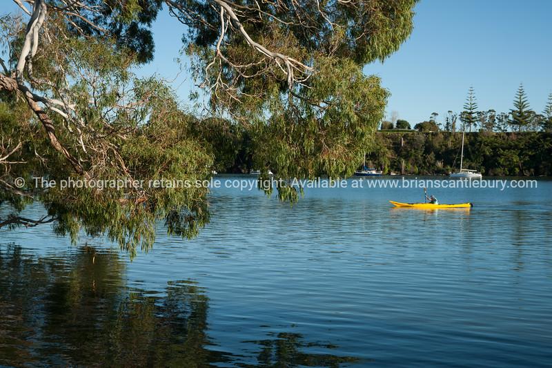 "Tree at Te puna-359 See;  <a href=""http://www.blurb.com/b/3811392-tauranga"">http://www.blurb.com/b/3811392-tauranga</a> mount maunganui landscape photography, Tauranga Photos; Tauranga photos, Photos of Tauranga Also see; <a href=""http://www.brianscantlebury.com/Events"">http://www.brianscantlebury.com/Events</a>"