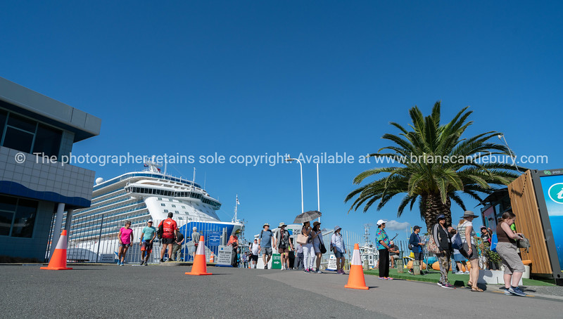 Passengers disembark at Port of Tauranga for days visit and sight seeing.