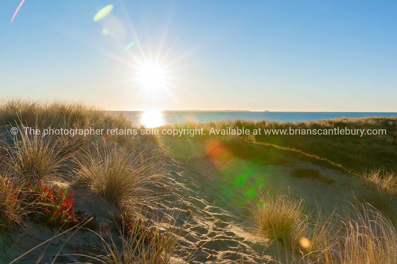 Lens flare created over sea and sand dune at Papamoa beach