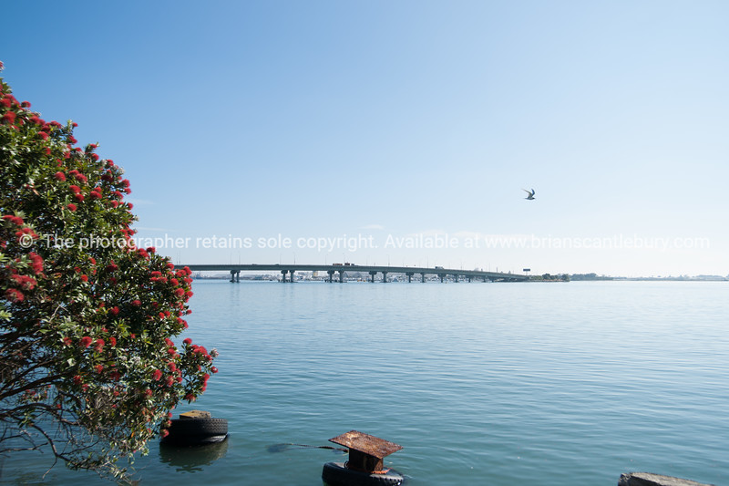 """Tauranga harbour, looking from Dive Crescent toward the bridge. See;  <a href=""""http://www.blurb.com/b/3811392-tauranga"""">http://www.blurb.com/b/3811392-tauranga</a> mount maunganui landscape photography, Tauranga Photos; Tauranga photos, Photos of Tauranga Also see; <a href=""""http://www.brianscantlebury.com/Events"""">http://www.brianscantlebury.com/Events</a>"""