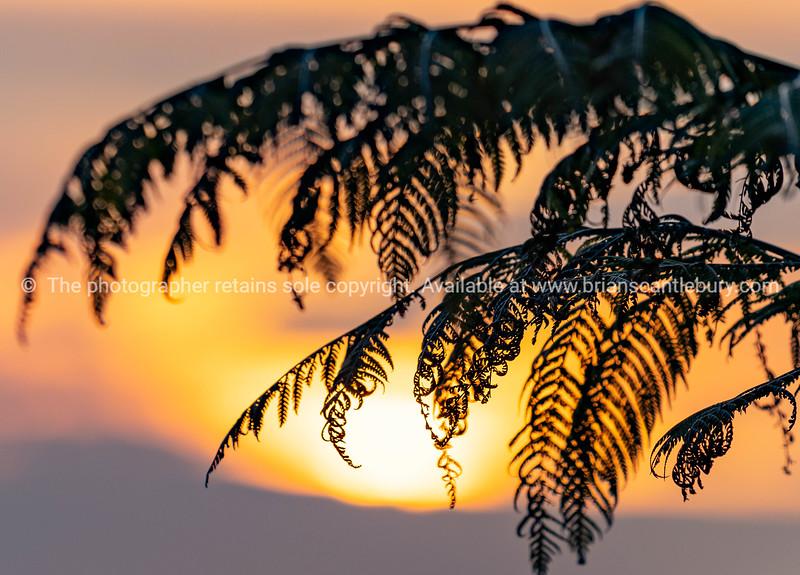 Sunrise from slopes Mount Maunganui