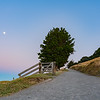 Path up Mount Maunganui and moon.