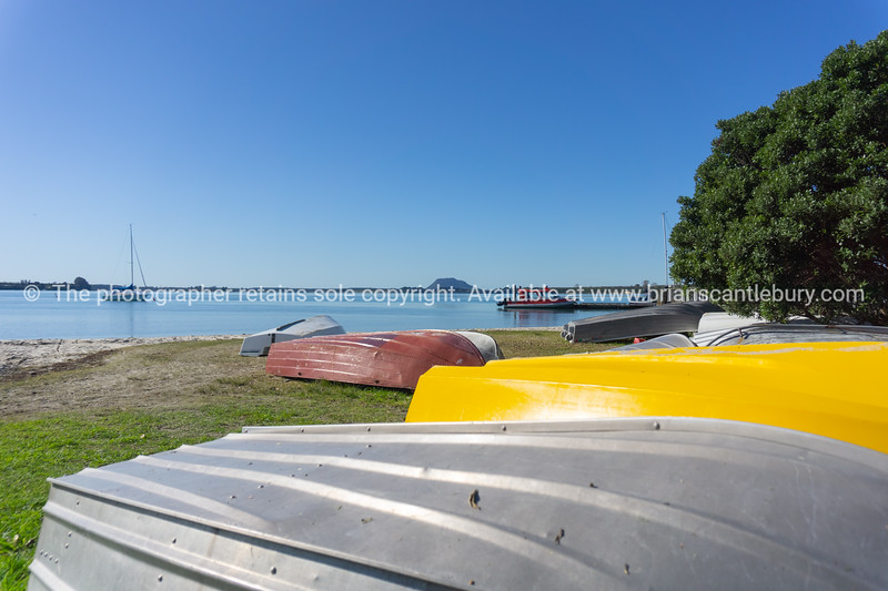 Omokoroa, Tauranga.