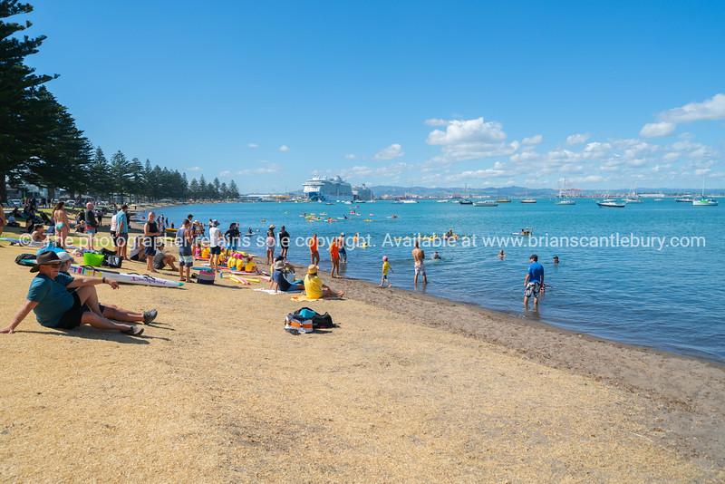 People crowd Pilot Bay beachfront