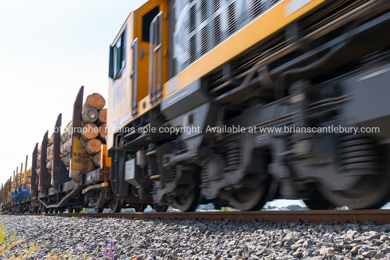 Tauranga Railway Bridge-12