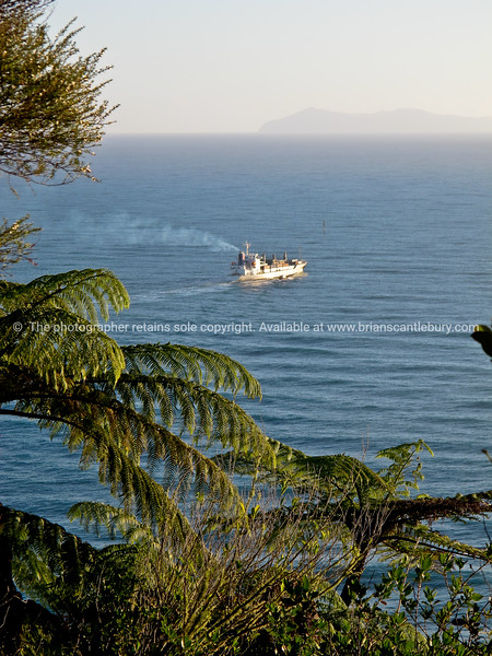 "Ship leaves Port of Tauranga, viewed from high up on the slopes of Mount Maunganui, with Mayor Island in the bachground. Tauranga is New Zealands 5th largest city and offers a wonderfull variety of scenic and cultural experiences. Tauranga stock images Tauranga scenics. See;  <a href=""http://www.blurb.com/b/3811392-tauranga"">http://www.blurb.com/b/3811392-tauranga</a> mount maunganui landscape photography, Tauranga Photos; Tauranga photos, Photos of Tauranga Also see; <a href=""http://www.brianscantlebury.com/Events"">http://www.brianscantlebury.com/Events</a>"
