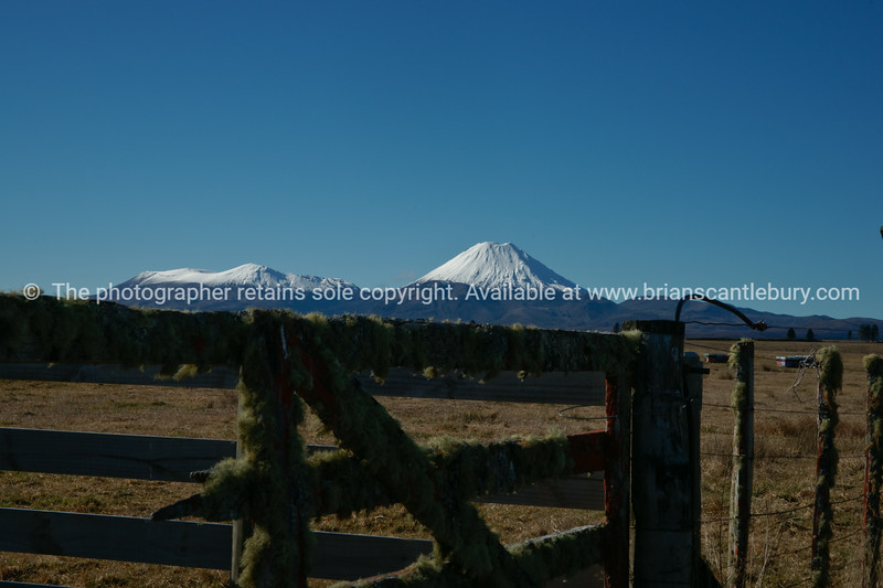 Mountains Ngauruhoe and Tongariro beyond the rural scene