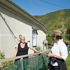 Neighbours talking over fence. New Zealand images.