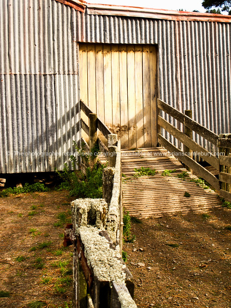 Old NZ Shearing Shed. Tora. New Zealand Image.