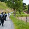 Group sets off on Tora Walk. New Zealand Image.