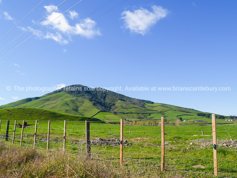 Typical New Zealand rolling countryside