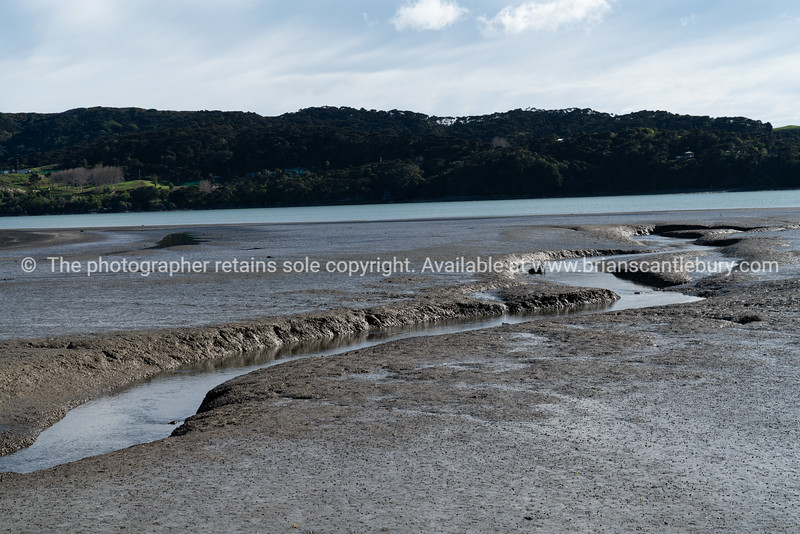 Small stream flows through expansive low tide mudflats in Raglan harbour