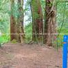 Waikato River Trail at Arapuni.