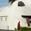 Large white corrugated iron iconic sheep building