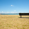 One wooden bench seat on Auckland waterfront