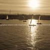 Napier waterfront, Westshore, Ahuriri, yachts returning at sunset.