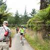 Walking and cycling on Karangahake Gorge track. New Zealand images.