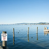 LAke Rotorua waterfront.